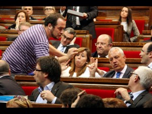 llunatics al parlament